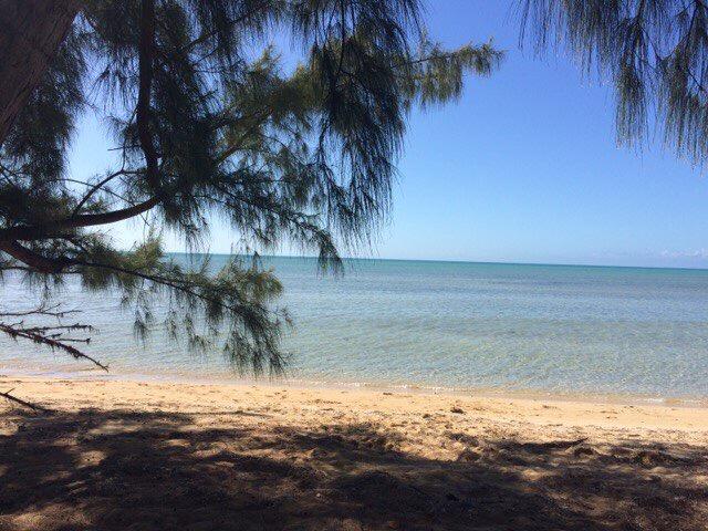 Багамы - фото 52