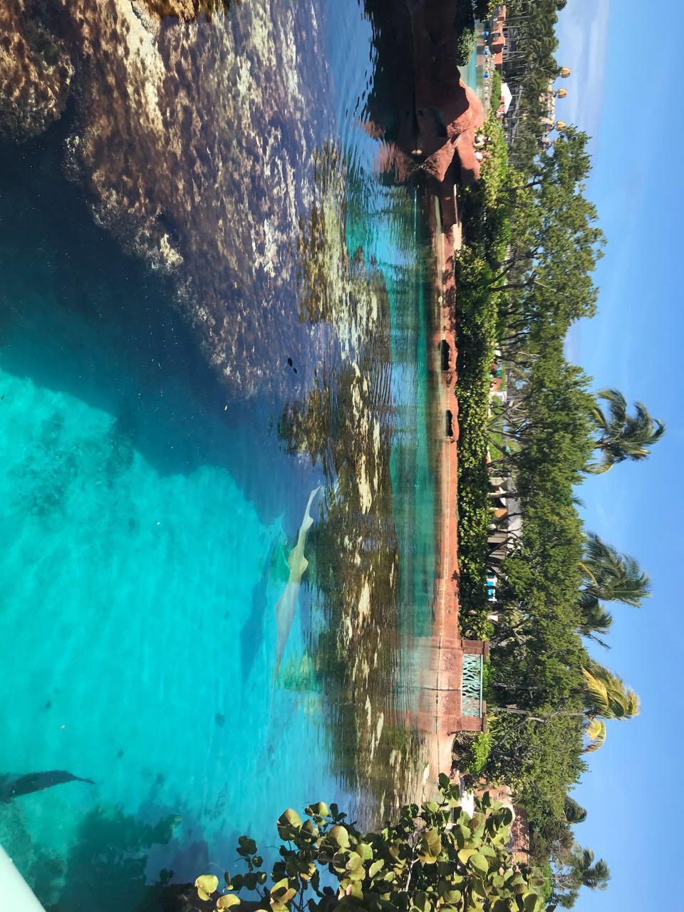 Багамы - фото 25